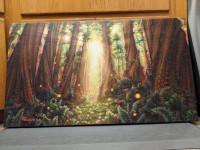 af_nungies_forest_.jpg